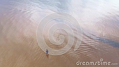 Aereo: giovane donna in vestito luminoso blu che cammina intorno - al paesaggio giallastro scenico di tramonto dell'acqua bassa a stock footage