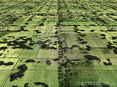 Aerial image of farmland