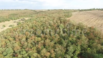 Aerial landscape from Moldova, in a summer day. Aerial landscape from Moldova, in a summer day, green stock video footage