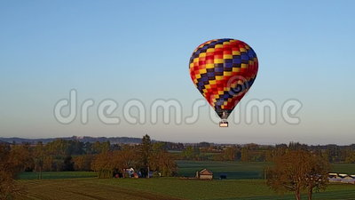 Hot air balloon flying over the farm. This is an aerial video of a hot air balloon flying over Wooden Shoe Tulip Farm stock video