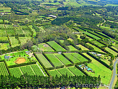 Aerial View of Agriculture near Paihia, New Zealan