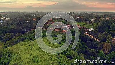 Aerial view of the Artists Walk Campuhan Ridge Walk in Ubud village, Bali island stock video footage