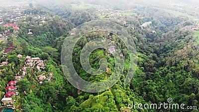 Aerial view of the Artists Walk Campuhan Ridge Walk in Ubud village, Bali island stock footage
