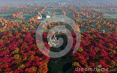 Aerial View Of Autumn Countryside Daytime