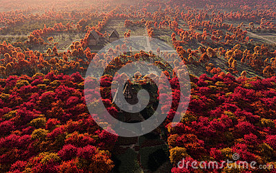 Aerial View Of Autumn Countryside