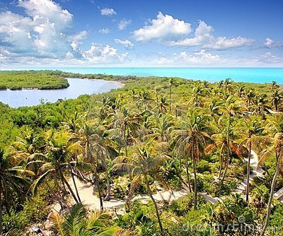 Aerial view Contoy tropical caribbean island
