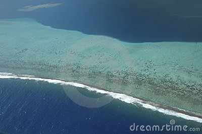 Aerial view of coral reef