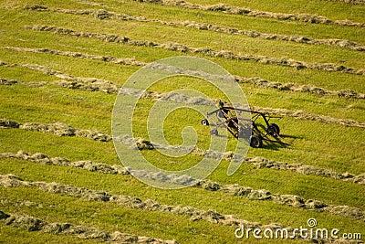 Aerial view of cut hay field