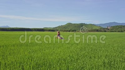 aerial view girl sits in yoga pose on rice fieldhills
