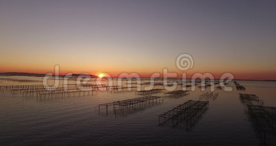 Aerial view of an oyster field during sunset Stock Photo
