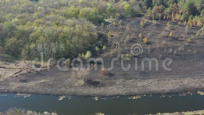 Aerial view scorched earth and tree trunks after a spring fire in forest. Black burnt field. Extraordinary incident. Consequences of a forest fire stock footage