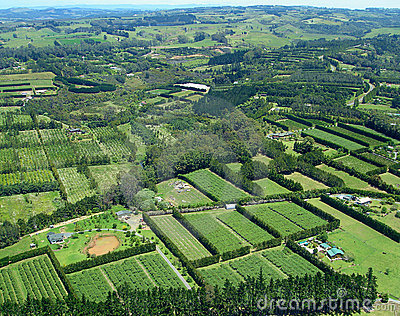 Aerial view of Vineyards and Rural Farms