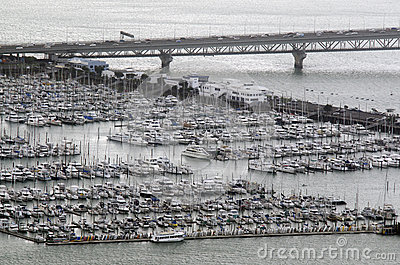 Aerial view of Westhaven Marina in Auckland New Zealand NZ Editorial Stock Photo