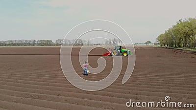 Aero Agronomista camina en el campo con filas especiales de tierra Ella prueba, usando tableta, la calidad de la papeleta automat almacen de metraje de vídeo