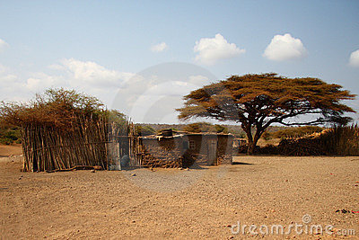 Africa houses in savanna