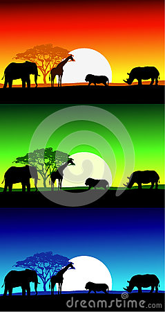 Africa safari landscape background