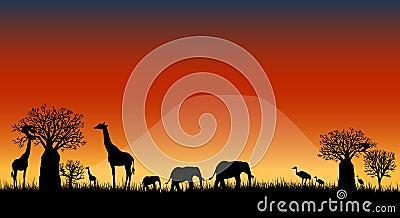 Africa savanna landscape vector