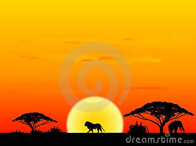 Africa sundown