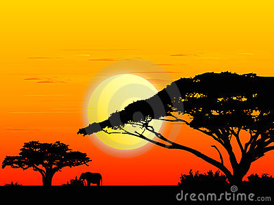 Africa sundown (vector)