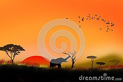 Africa sunset illustration
