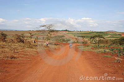 Africa,Tanzania, street at plantations of coffee