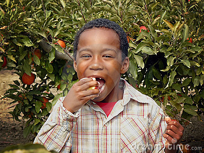 African American Boy Eating an Apple in an Orchard