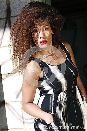 African-American female lifestyle fashion