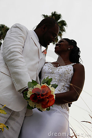 African American Wedding Couple Stock Photo Image 13352110