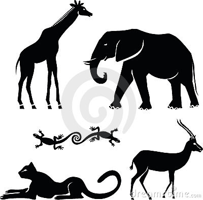 Free African Animals Royalty Free Stock Photos - 19743398