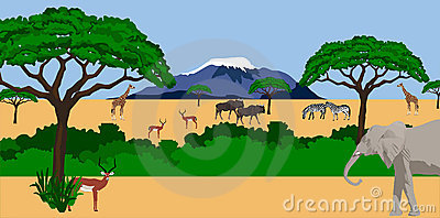 African animals in african scenery