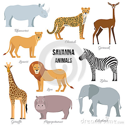 Free African Animals Of Savanna Elephant, Rhino, Giraffe, Cheetah, Zebra, Lion, Hippo . Vector Illustration Royalty Free Stock Photos - 90953988