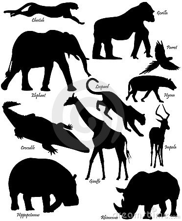 African Animals Shapes