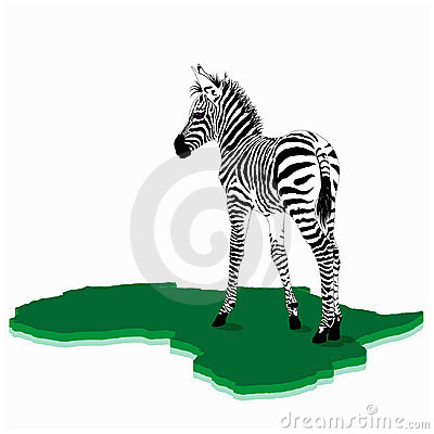 Free African Baby Zebra Illustration Royalty Free Stock Photography - 12296297