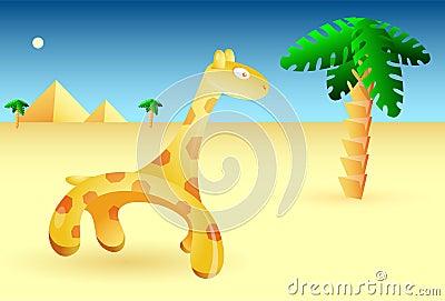 African desert