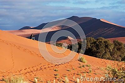 African desert adventure