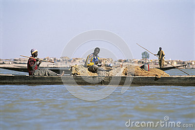 African fisherman pinnace navigating the river Niger Editorial Stock Image