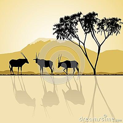 African landscape. Kenya