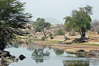 African river landscape reflecting in water