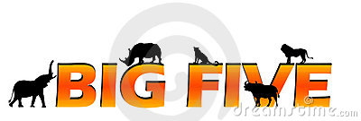 African s big five text