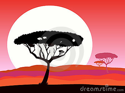 African safari background with red sunset and tree