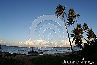 African Summer beach