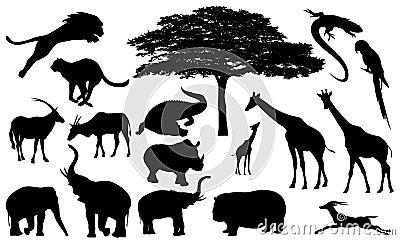 African wildlife vector