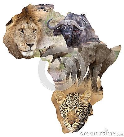 african wildlife background stock photography image 36095002. Black Bedroom Furniture Sets. Home Design Ideas