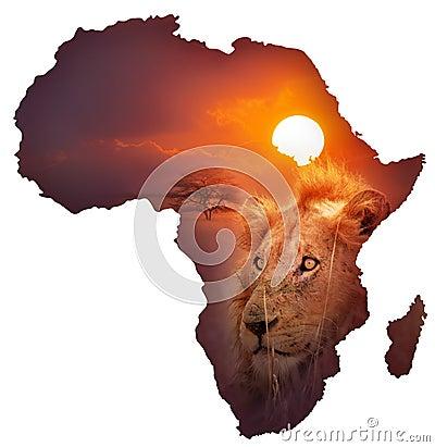 African Wildlife Map