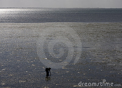 African woman at low tide