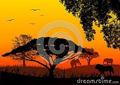 Afrika-Landschaft
