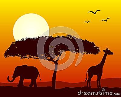 Afrikanische Landschaft am Sonnenuntergang