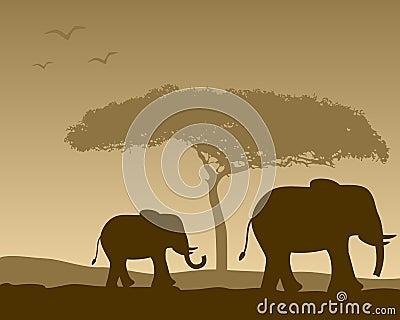 Afrikanische Landschaft u. Elefanten