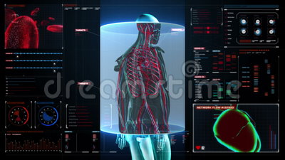 Aftastenbloedvat in mannelijk lichaam in digitale vertoningsdashboard x-ray mening vector illustratie