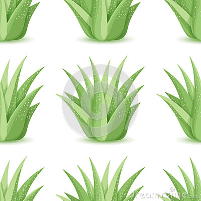 Free Agave - Vector Seamless Pattern Royalty Free Stock Image - 77430926